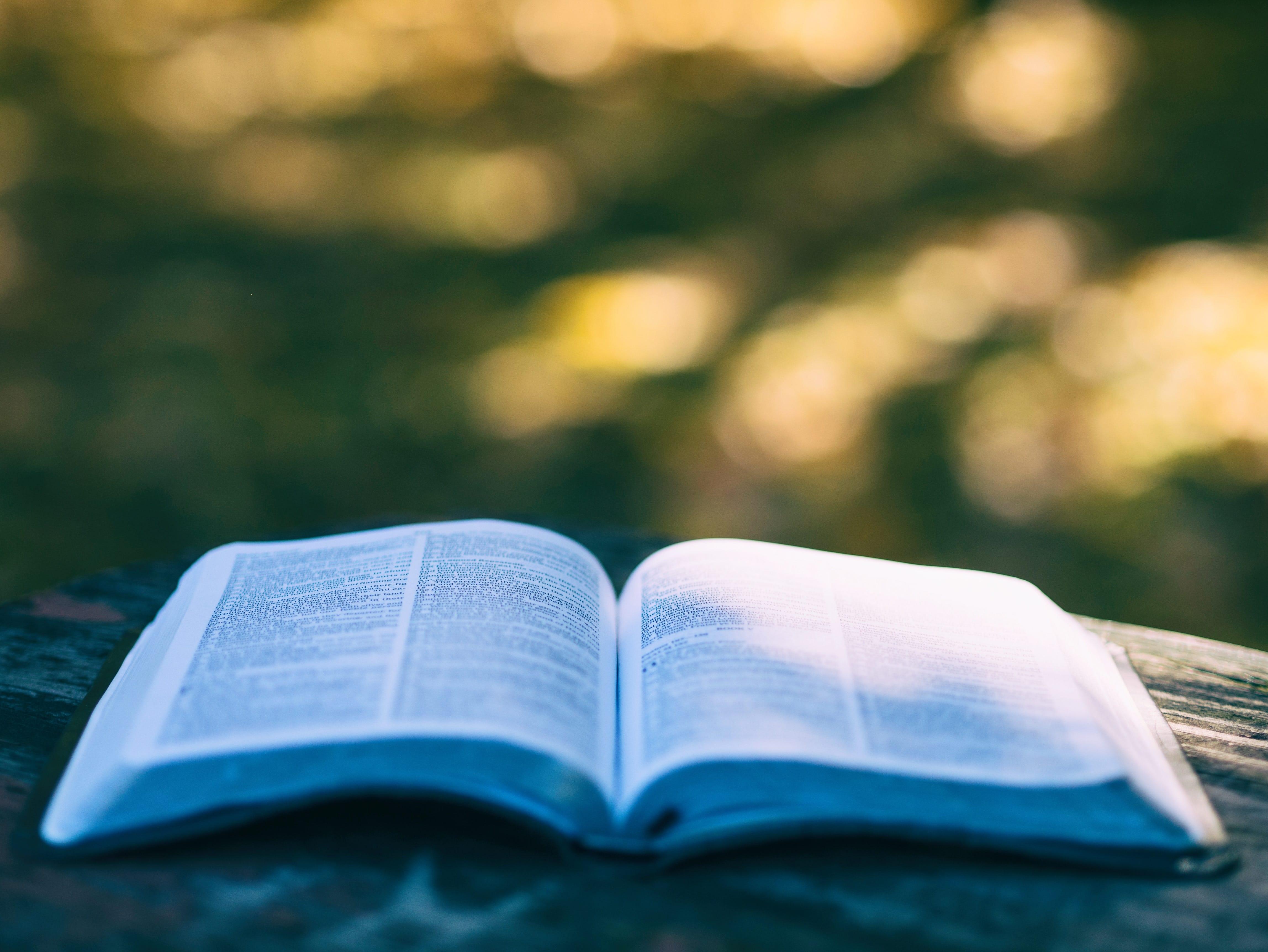 Wielka Księga Radości